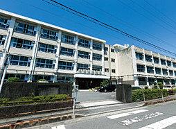 陽南中学校 約300m(徒歩4分)
