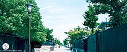 白壁エリアの街並み 約500m(徒歩7分)