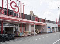 ビックリブ 安城店 約830m(徒歩11分)