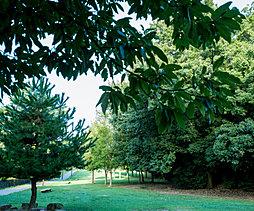 小幡緑地 約1,017m(徒歩13分)