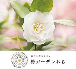 【ダイワハウス】椿ガーデンおち (分譲住宅)