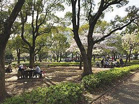 篠崎公園/バーベキュー広場