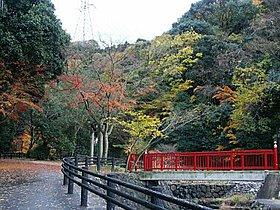 源氏の滝は行楽シーズンに最適です!