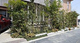 家を豪華に彩る植栽