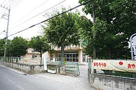 新里小学校 340m(徒歩5分)