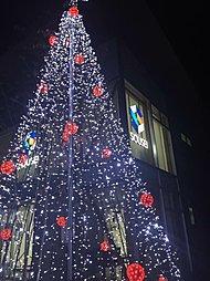 大人気の近鉄大和八木駅から徒歩14分。中和幹線にも近く、買い物...