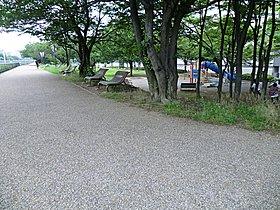 【新横浜駅前公園】現地近くから鶴見川方面へ繋がる緑地公園。
