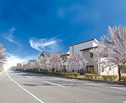 桜に包まれる華やかな街、ナシオン東山台