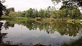 「新しい村」には広大な池、ほっつけ田、ハーブ園もあります。