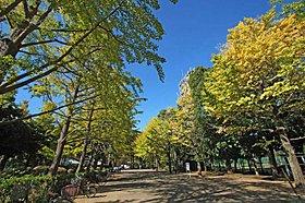 都立城北中央公園(徒歩6分・約465m)