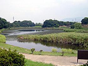 水鳥や様々な生き物を観察できる池や森林遊歩道があります