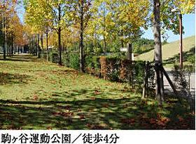 休日にはスポーツやピクニックを楽しむ家族連れの憩いの公園。