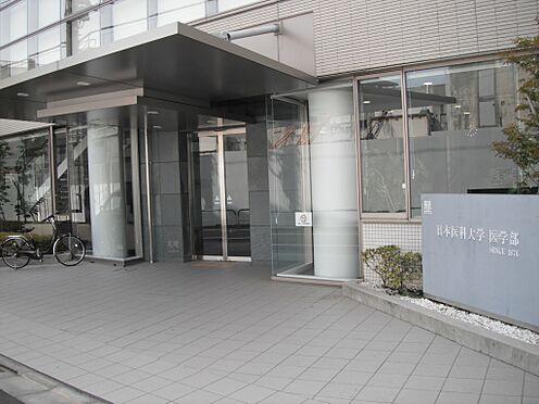 マンション(建物一部)-文京区千駄木2丁目 大学日本医科大学まで430m