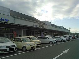 ミニストップ道の駅藤川宿店まで545m
