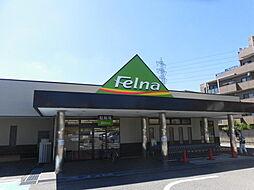 Felna永覚新町店まで342m 徒歩5分