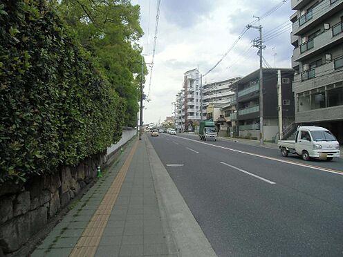 マンション(建物全部)-京都市伏見区桃山町松平筑前 前面道路