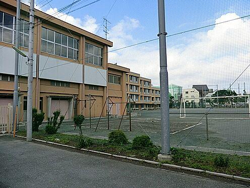 マンション(建物全部)-世田谷区中町4丁目 区立中町小学校