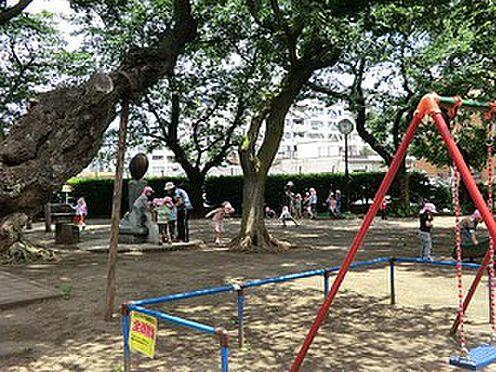 マンション(建物全部)-港区白金台5丁目 周辺環境:雷神山児童遊園