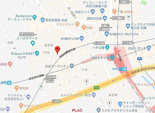 店舗事務所(建物全部)-渋谷区道玄坂2丁目 地図