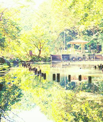 むじなが池公園 約920m(徒歩12分)