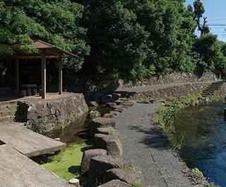 八ヶ上東緑地公園 約900m(徒歩12分)