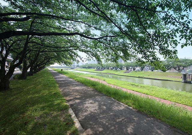 桜川 約350m(徒歩5分)