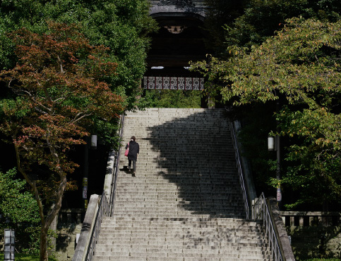 宇都宮二荒山神社 約890m(徒歩12分)