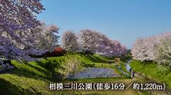 相模三川公園 約1,220m(徒歩16分)
