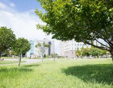 東ふれあい公園 約400m(徒歩5分)