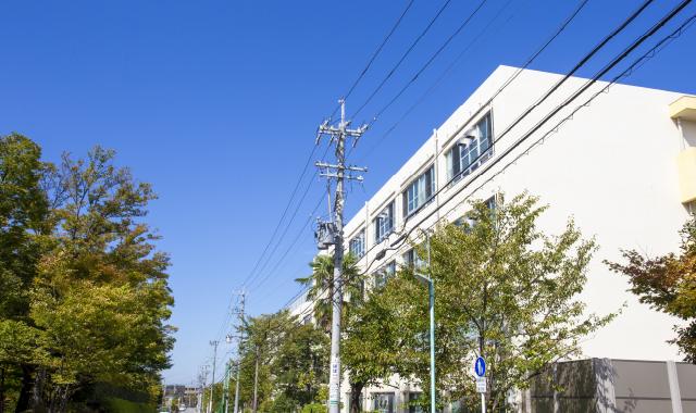 市立富士見台小学校 約200m(徒歩3分)