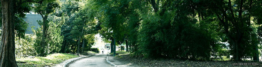 元茨木川緑地 約300m(徒歩4分)