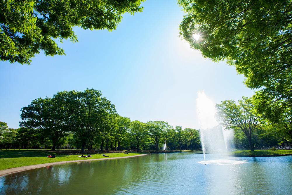 代々木公園 約1,150m(徒歩15分)