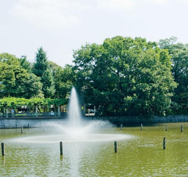 碑文谷公園 約250m(徒歩4分)