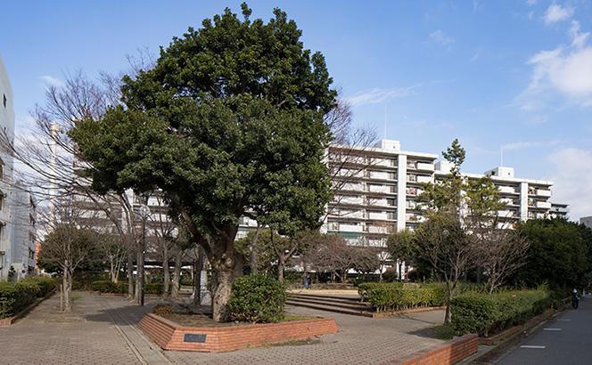 奥田三角公園 約110m(徒歩2分)