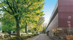 玉川図書館 約380m(徒歩5分)