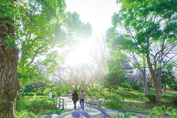 三ツ沢公園 約970m(徒歩13分)
