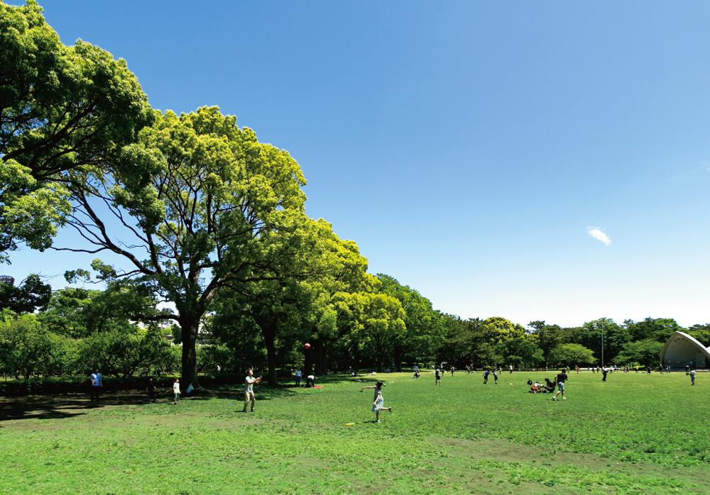 平塚市総合公園 約1,240m(徒歩16分)