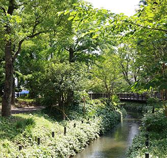 倉敷みらい公園 約500m(徒歩7分)