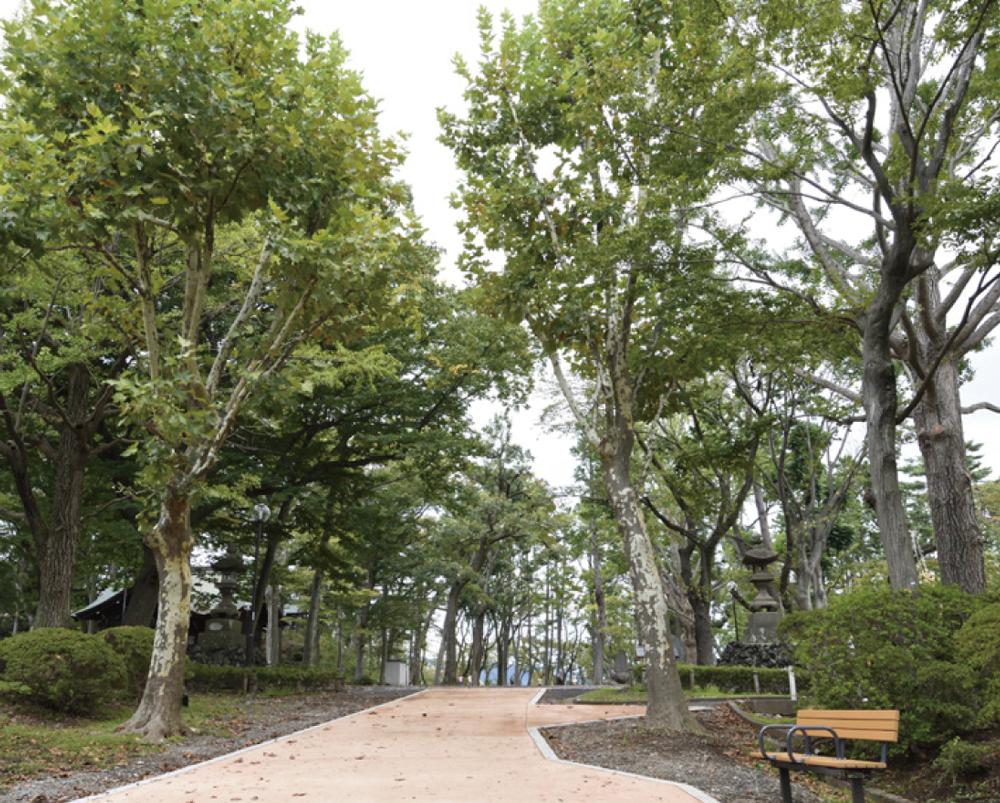 富士森公園 約1,410m(徒歩18分)