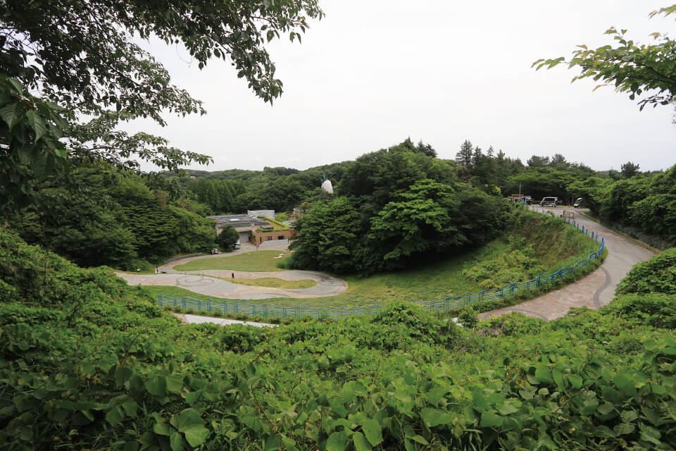 生田緑地 約950m(徒歩12分)