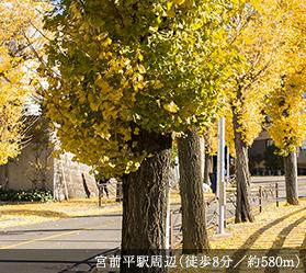 宮前平駅周辺 約580m(徒歩8分)