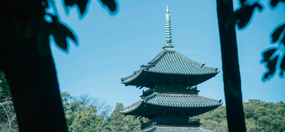 興正寺公園 約630m(徒歩8分)