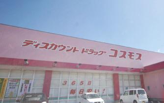 ディスカウント ドラッグ コスモス渡橋店 約450m(徒歩6分)