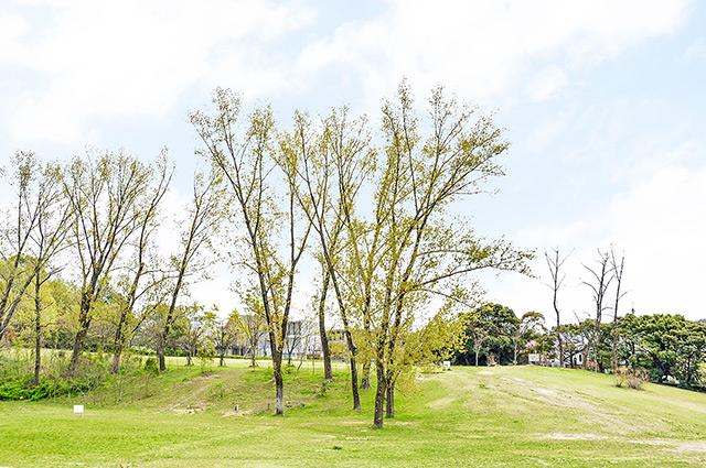 千里北公園 約850m(徒歩11分)