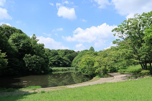 鴨池公園 約480m(徒歩6分)