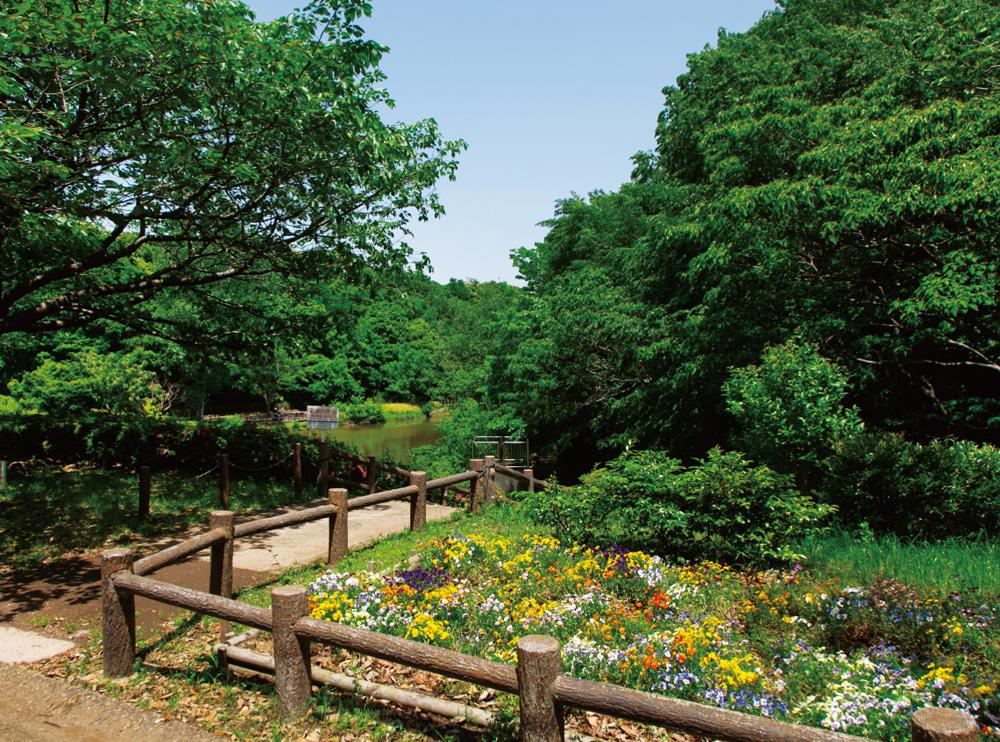 県立青葉の森公園 約1,290m(徒歩17分)