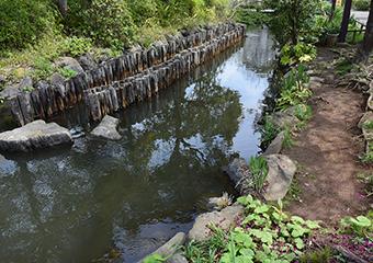 一之江境川親水公園 約100m(徒歩2分)