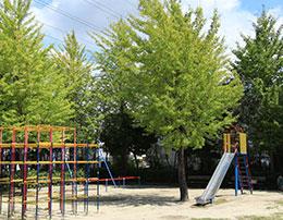 二三ヶ丘公園 約250m(徒歩4分)