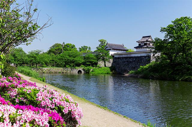 舞鶴公園 約480m(徒歩6分)