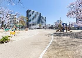 新道中央公園 約350m(徒歩5分)